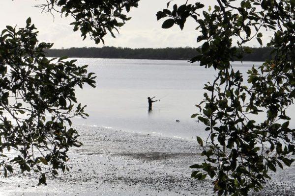 PSet-A-410-Lone Fisherman