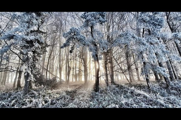 23_Magical Frost_101