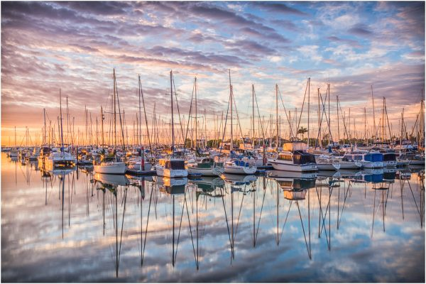 POpen-A-487-Manly Boat Harbour