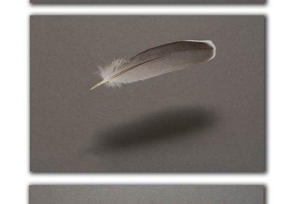 PSet-A-487-Light as Feathers